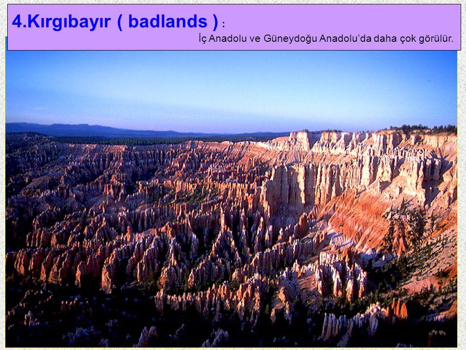 23 4.Kırgıbayır ( badlands ) : İç Anadolu ve Güneydoğu Anadolu'da daha çok görülür.