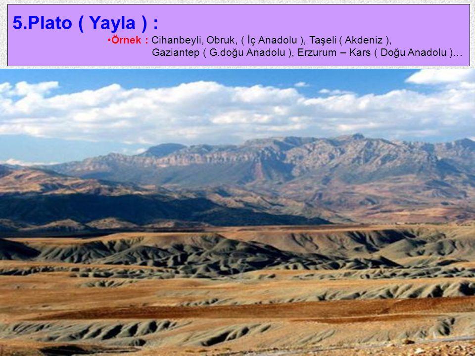 24 5.Plato ( Yayla ) : Örnek : Cihanbeyli, Obruk, ( İç Anadolu ), Taşeli ( Akdeniz ), Gaziantep ( G.doğu Anadolu ), Erzurum – Kars ( Doğu Anadolu )…