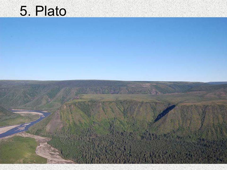 25 5. Plato 25