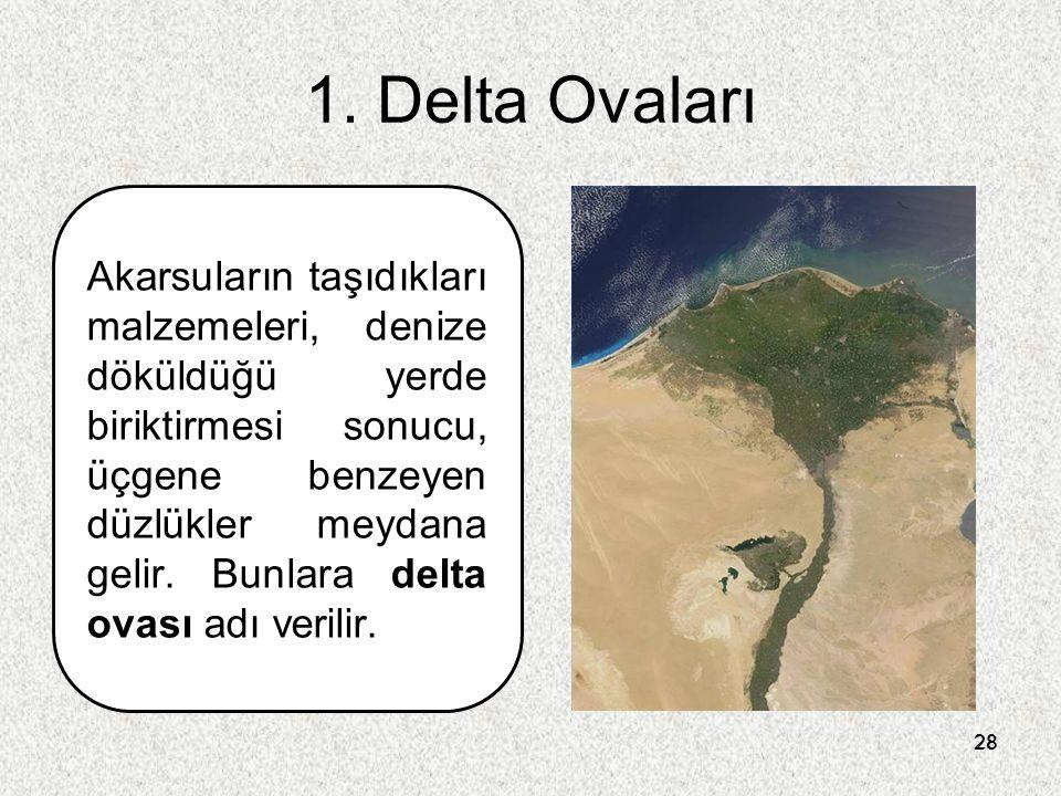 28 1. Delta Ovaları Akarsuların taşıdıkları malzemeleri, denize döküldüğü yerde biriktirmesi sonucu, üçgene benzeyen düzlükler meydana gelir. Bunlara