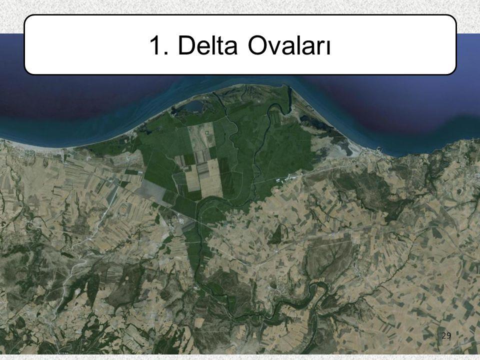 29 1. Delta Ovaları 29