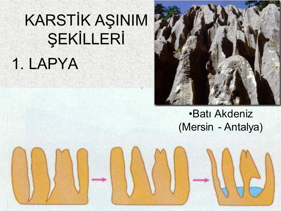 58 1. LAPYA KARSTİK AŞINIM ŞEKİLLERİ Batı Akdeniz (Mersin - Antalya)