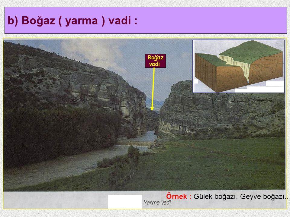 8 b) Boğaz ( yarma ) vadi : Boğaz vadi Örnek : Gülek boğazı, Geyve boğazı..