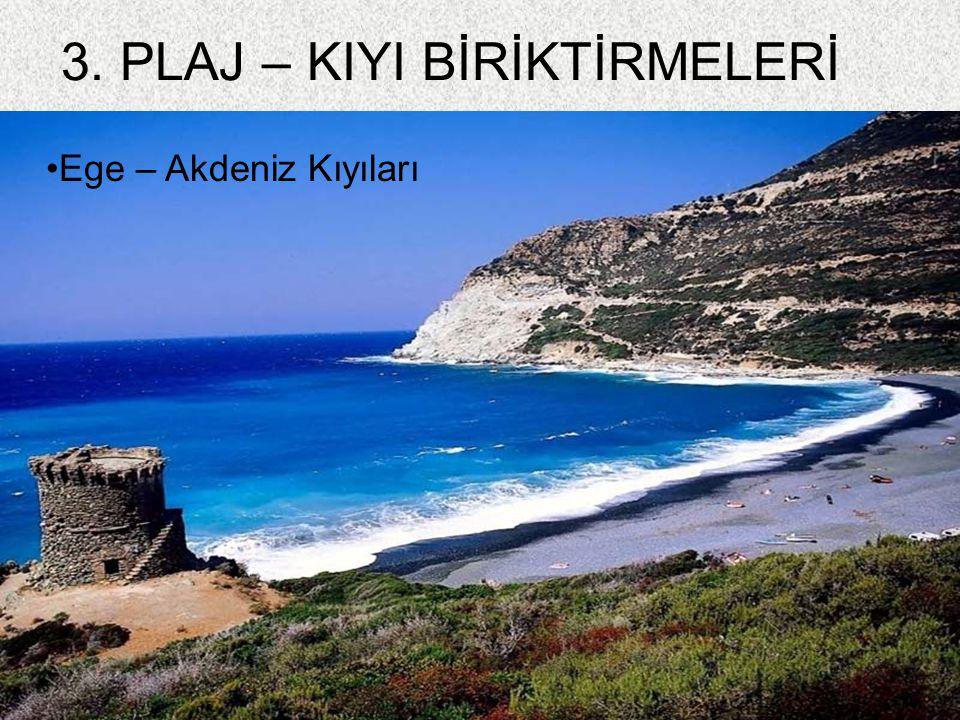 89 3. PLAJ – KIYI BİRİKTİRMELERİ Ege – Akdeniz Kıyıları