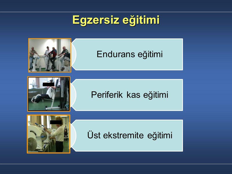 Egzersiz eğitimi Endurans eğitimi Periferik kas eğitimi Üst ekstremite eğitimi