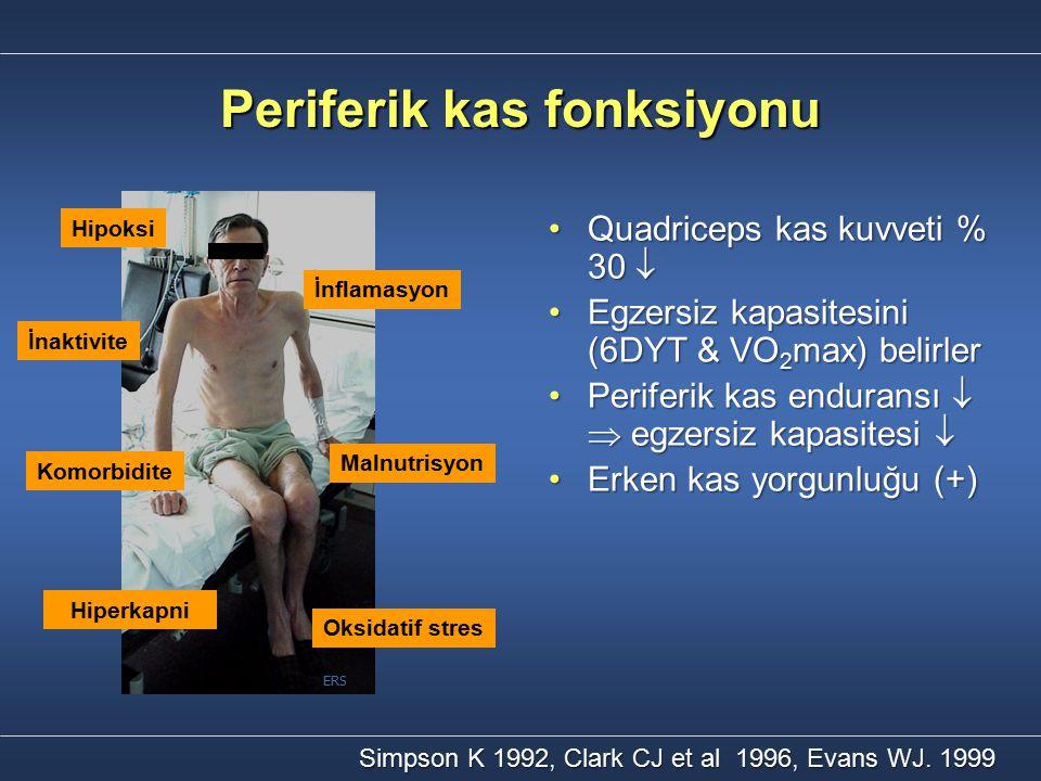 Periferik kas fonksiyonu Quadriceps kas kuvveti % 30 Quadriceps kas kuvveti % 30  Egzersiz kapasitesini (6DYT & VO 2 max) belirlerEgzersiz kapasites