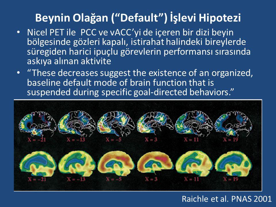 """Beynin Olağan (""""Default"""") İşlevi Hipotezi Nicel PET ile PCC ve vACC'yi de içeren bir dizi beyin bölgesinde gözleri kapalı, istirahat halindeki bireyle"""