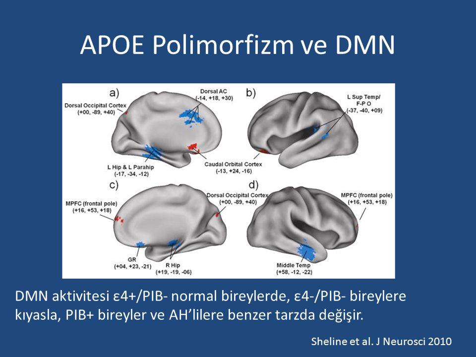 APOE Polimorfizm ve DMN DMN aktivitesi ε4+/PIB- normal bireylerde, ε4-/PIB- bireylere kıyasla, PIB+ bireyler ve AH'lilere benzer tarzda değişir. Sheli