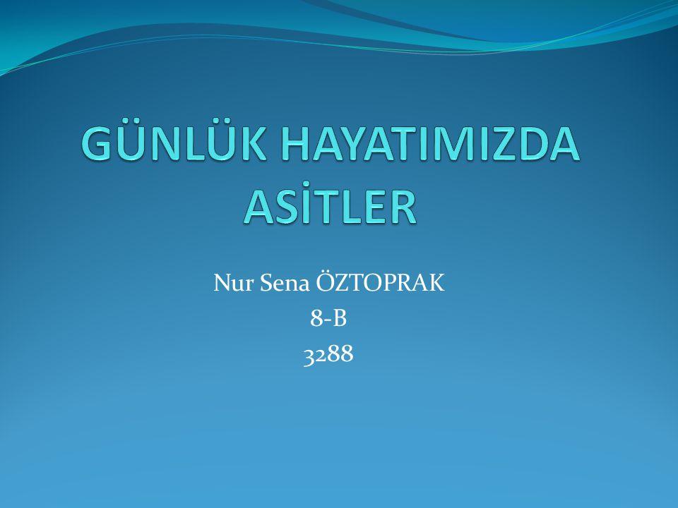 Nur Sena ÖZTOPRAK 8-B 3288