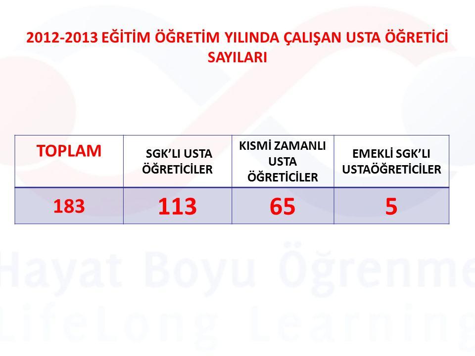 2012-2013 EĞİTİM ÖĞRETİM YILINDA ÇALIŞAN USTA ÖĞRETİCİ SAYILARI TOPLAM SGK'LI USTA ÖĞRETİCİLER KISMİ ZAMANLI USTA ÖĞRETİCİLER EMEKLİ SGK'LI USTAÖĞRETİCİLER 183 113655