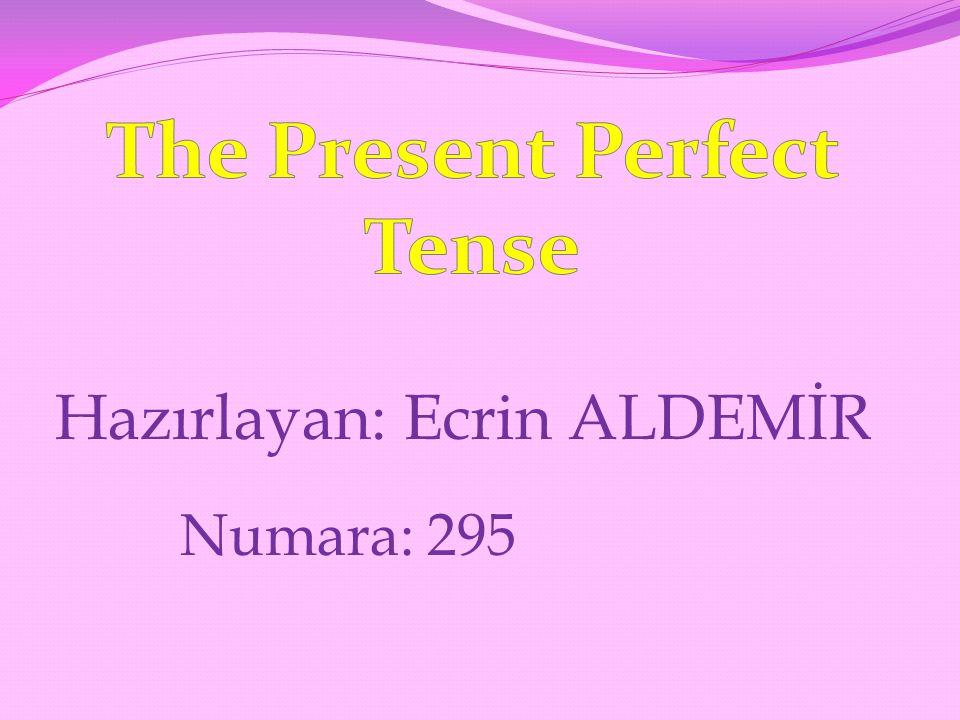 Hazırlayan: Ecrin ALDEMİR Numara: 295