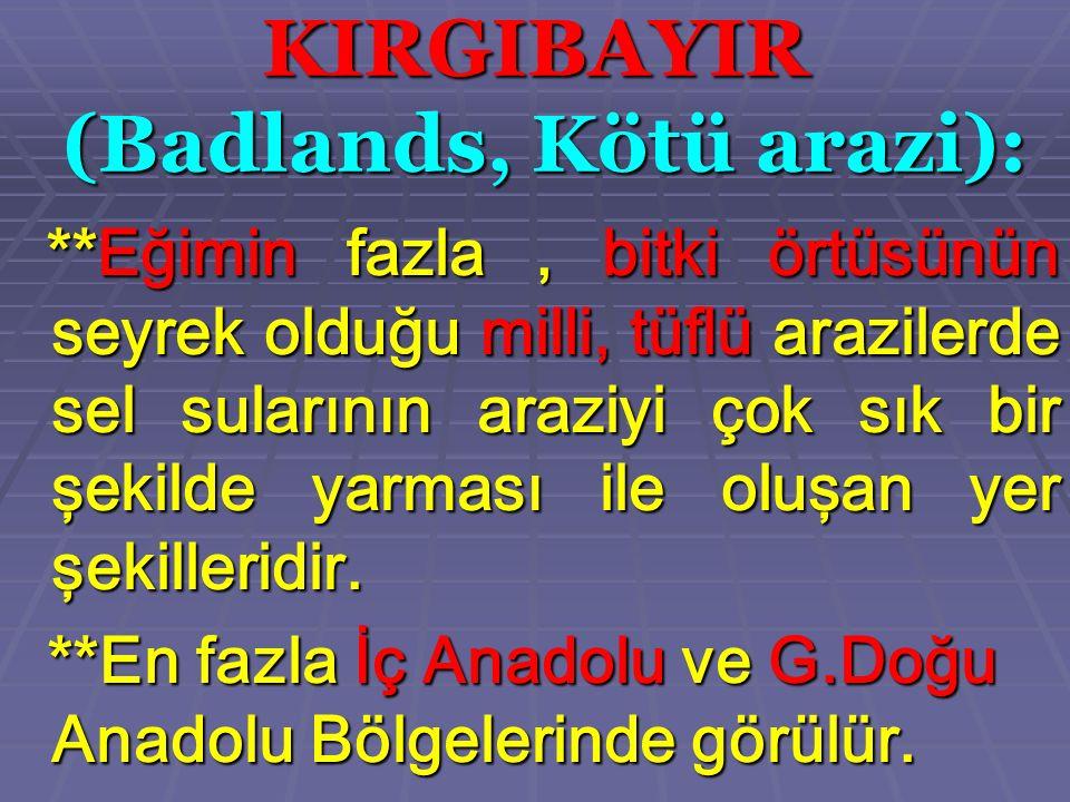 KIRGIBAYIR (Badlands, Kötü arazi): ** Eğimin fazla, bitki örtüsünün seyrek olduğu milli, tüflü arazilerde sel sularının araziyi çok sık bir şekilde ya