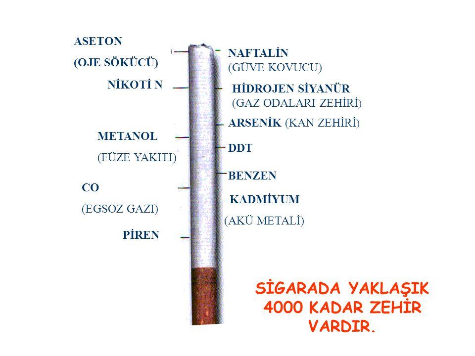ASETON (OJE SÖKÜCÜ) NİKOTİ N METANOL (FÜZE YAKITI) CO (EGSOZ GAZI) PİREN NAFTALİN (GÜVE KOVUCU) HİDROJEN SİYANÜR (GAZ ODALARI ZEHİRİ ) ARSENİK (KAN ZE