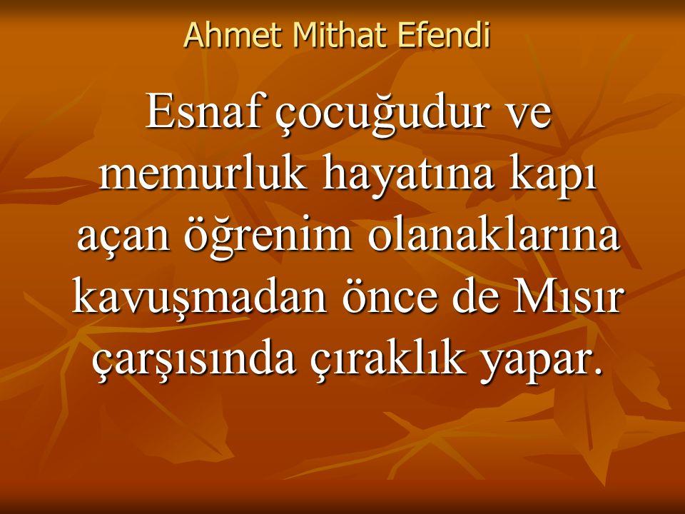 Ahmet Mithat Efendi Esnaf çocuğudur ve memurluk hayatına kapı açan öğrenim olanaklarına kavuşmadan önce de Mısır çarşısında çıraklık yapar.