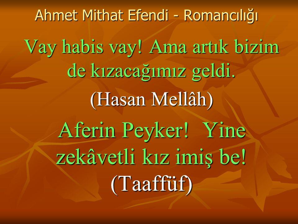 Ahmet Mithat Efendi - Romancılığı Vay habis vay.Ama artık bizim de kızacağımız geldi.