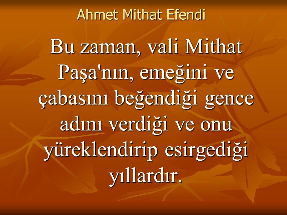 Ahmet Mithat Efendi Bütün ömrünce devlete hizmet yolundan ayrılmaz; ekmek yediği bu yolu yazarlığında da sürdürür.