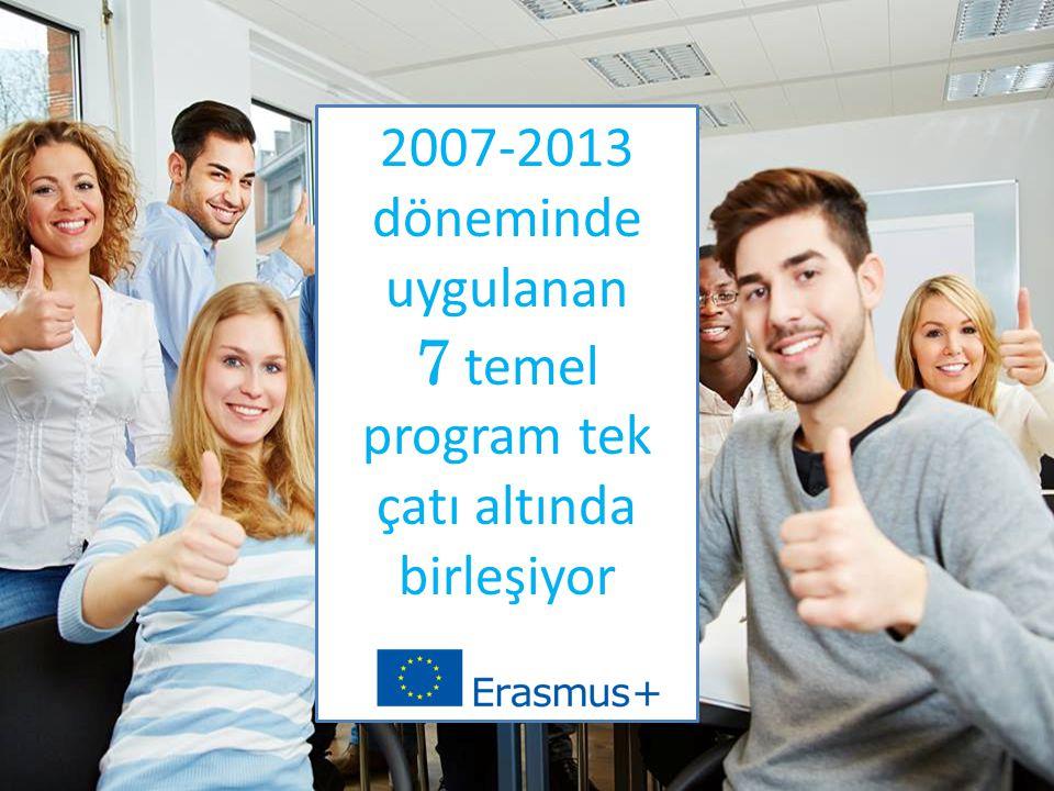 2007-2013 döneminde uygulanan 7 temel program tek çatı altında birleşiyor