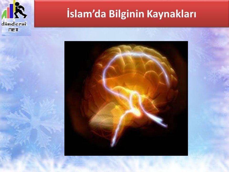 İslam'da Bilginin Kaynakları
