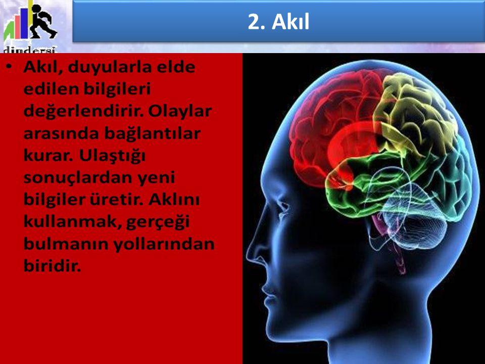 2. Akıl