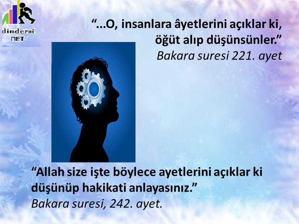 """""""Allah size işte böylece ayetlerini açıklar ki düşünüp hakikati anlayasınız."""" Bakara suresi, 242. ayet. """"...O, insanlara âyetlerini açıklar ki, öğüt a"""