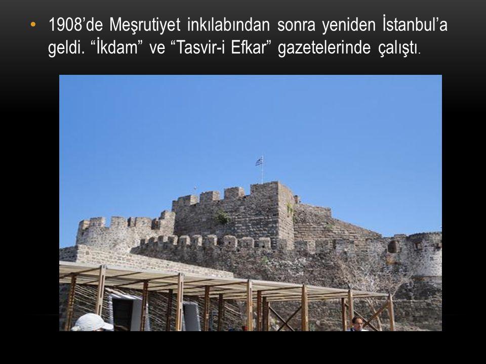 """1908'de Meşrutiyet inkılabından sonra yeniden İstanbul'a geldi. """"İkdam"""" ve """"Tasvir-i Efkar"""" gazetelerinde çalıştı."""