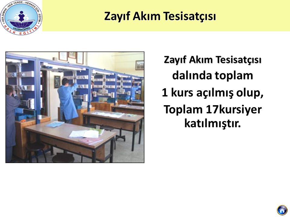 Zayıf Akım Tesisatçısı dalında toplam 1 kurs açılmış olup, Toplam 17kursiyer katılmıştır.