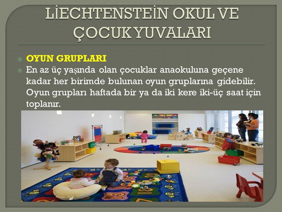  OYUN GRUPLARI  En az üç ya ş ında olan çocuklar anaokuluna geçene kadar her birimde bulunan oyun gruplarına gidebilir.