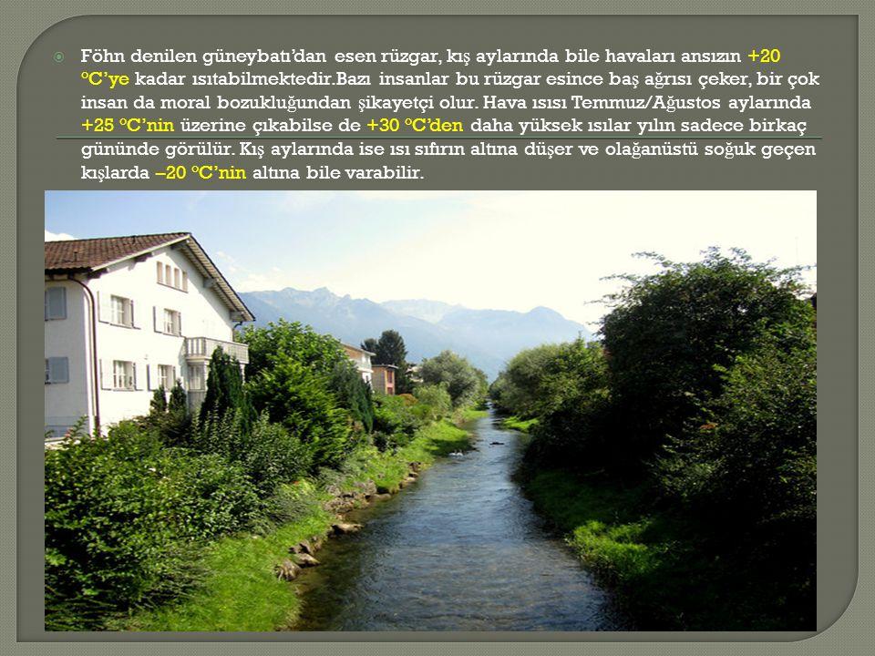 Triesen'deki Formatio Özel Ö ğ renim Okulu tam gün okuludur.