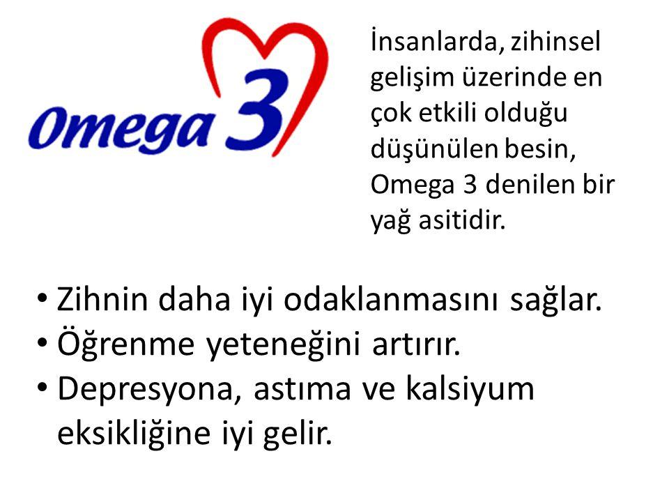 İnsanlarda, zihinsel gelişim üzerinde en çok etkili olduğu düşünülen besin, Omega 3 denilen bir yağ asitidir. Zihnin daha iyi odaklanmasını sağlar. Öğ