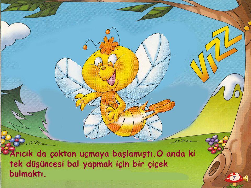 Arıcık da çoktan uçmaya başlamıştı.O anda ki tek düşüncesi bal yapmak için bir çiçek bulmaktı.