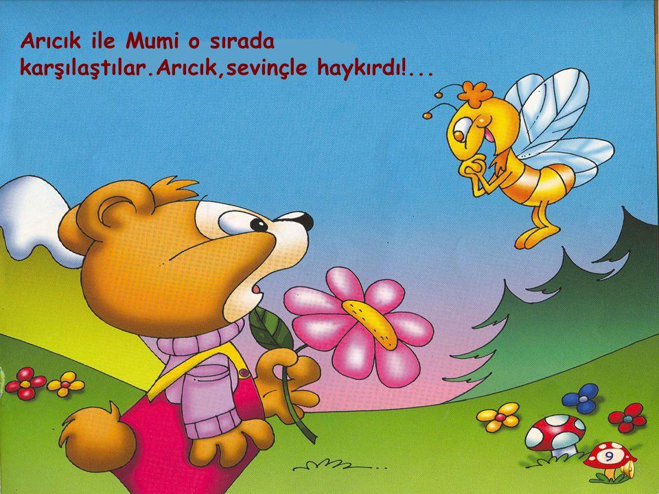 Arıcık ile Mumi o sırada karşılaştılar.Arıcık,sevinçle haykırdı!...