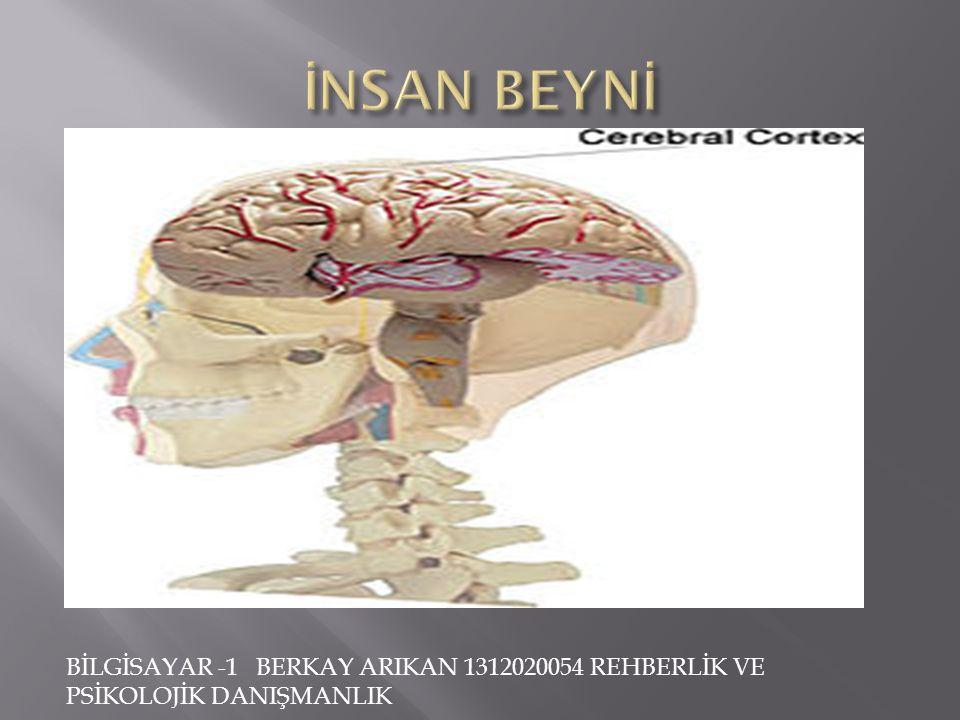 BİLGİSAYAR -1 BERKAY ARIKAN 1312020054 REHBERLİK VE PSİKOLOJİK DANIŞMANLIK  Beynin tanımı; kafatasının içindeki, tüm elektrokimyasal nöronsal eylemle