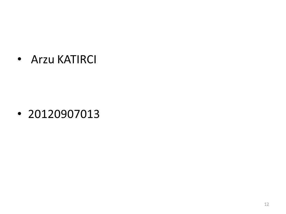 Arzu KATIRCI 20120907013 12