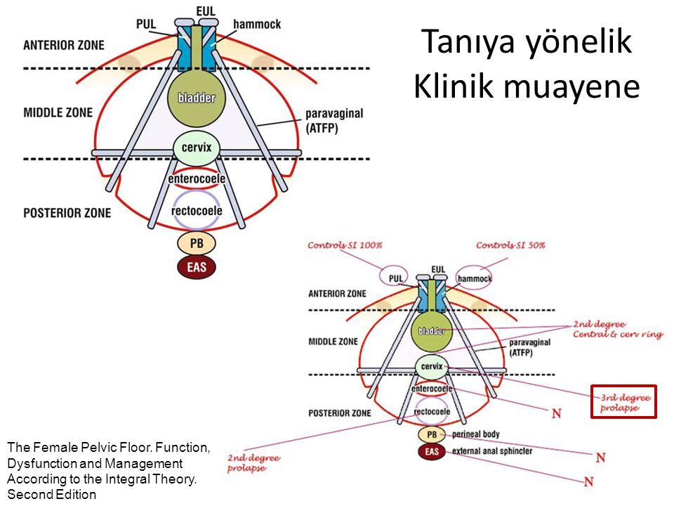 Sentetik graftlar Obstet Gynecol Clin N Am 36 (2009) 615–635