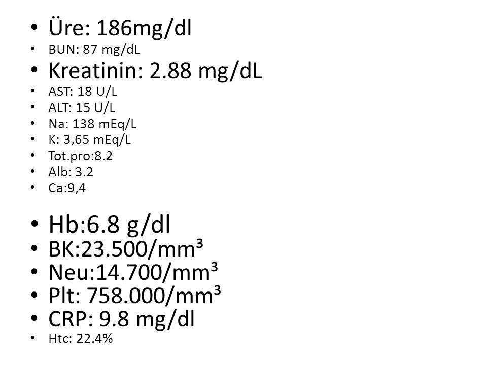 Üre: 186mg/dl BUN: 87 mg/dL Kreatinin: 2.88 mg/dL AST: 18 U/L ALT: 15 U/L Na: 138 mEq/L K: 3,65 mEq/L Tot.pro:8.2 Alb: 3.2 Ca:9,4 Hb:6.8 g/dl BK:23.500/mm³ Neu:14.700/mm³ Plt: 758.000/mm³ CRP: 9.8 mg/dl Htc: 22.4%