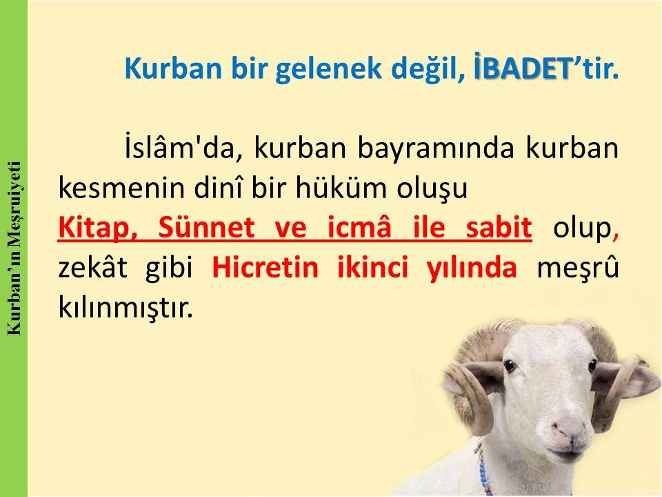 İBADET Kurban bir gelenek değil, İBADET'tir. İslâm'da, kurban bayramında kurban kesmenin dinî bir hüküm oluşu Kitap, Sünnet ve icmâ ile sabit olup, ze