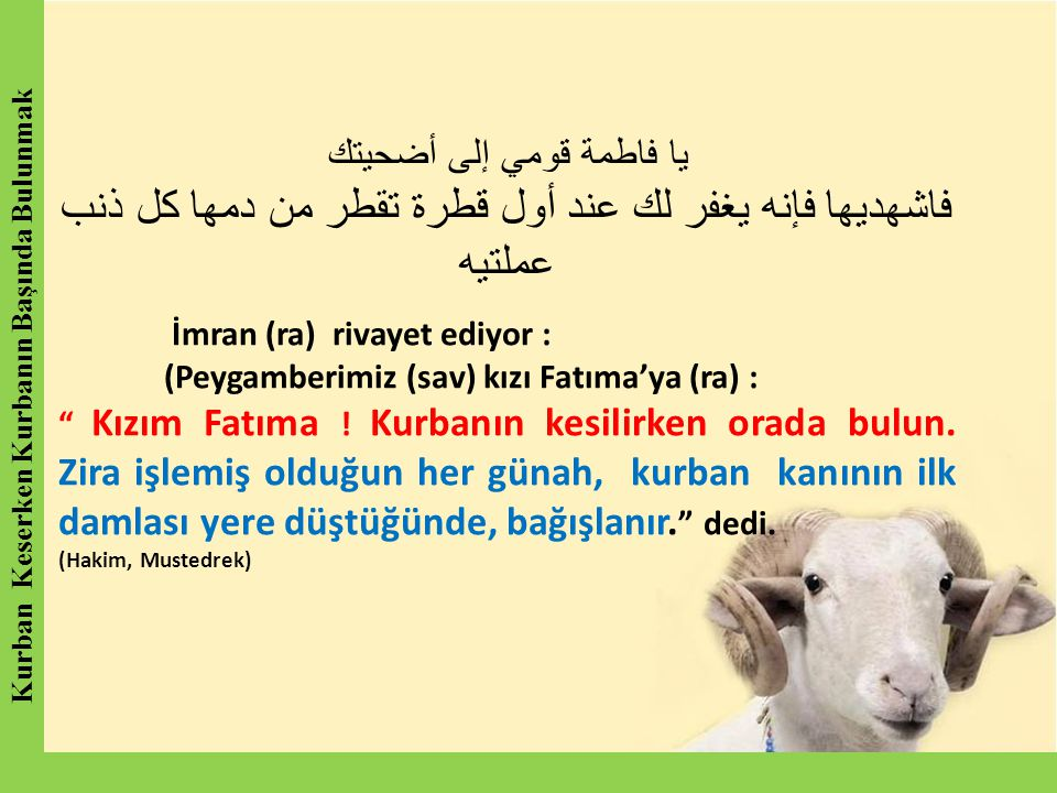 يا فاطمة قومي إلى أضحيتك فاشهديها فإنه يغفر لك عند أول قطرة تقطر من دمها كل ذنب عملتيه İmran (ra) rivayet ediyor : (Peygamberimiz (sav) kızı Fatıma'ya