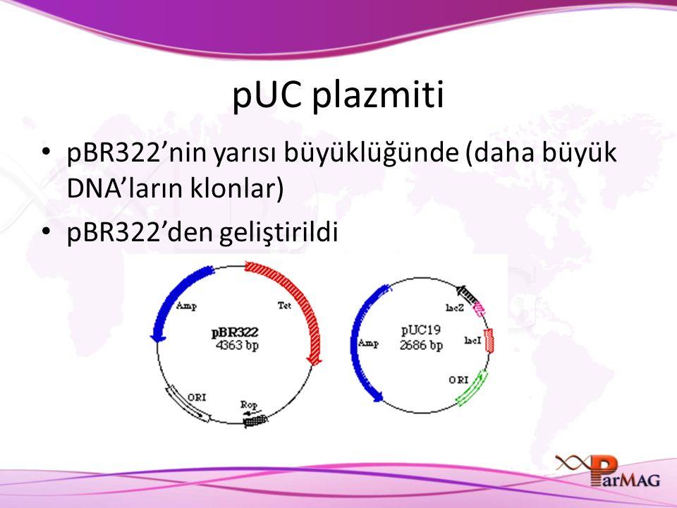 pUC plazmiti pBR322'nin yarısı büyüklüğünde (daha büyük DNA'ların klonlar) pBR322'den geliştirildi