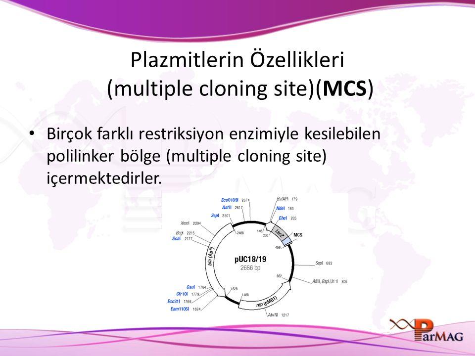 Plazmitlerin Özellikleri (multiple cloning site)(MCS) Birçok farklı restriksiyon enzimiyle kesilebilen polilinker bölge (multiple cloning site) içerme