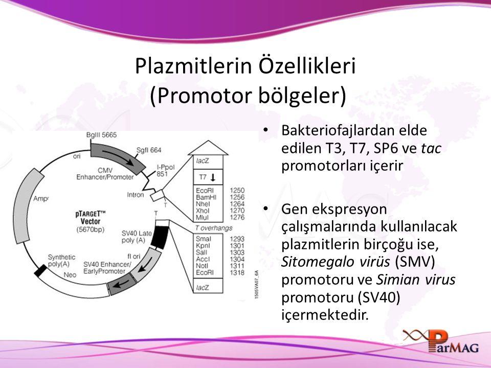 Plazmitlerin Özellikleri (Promotor bölgeler) Bakteriofajlardan elde edilen T3, T7, SP6 ve tac promotorları içerir Gen ekspresyon çalışmalarında kullanılacak plazmitlerin birçoğu ise, Sitomegalo virüs (SMV) promotoru ve Simian virus promotoru (SV40) içermektedir.