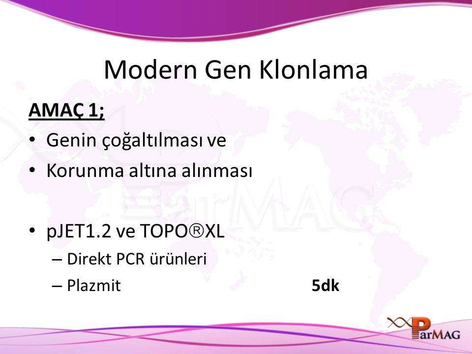 Modern Gen Klonlama AMAÇ 1; Genin çoğaltılması ve Korunma altına alınması pJET1.2 ve TOPO  XL – Direkt PCR ürünleri – Plazmit5dk