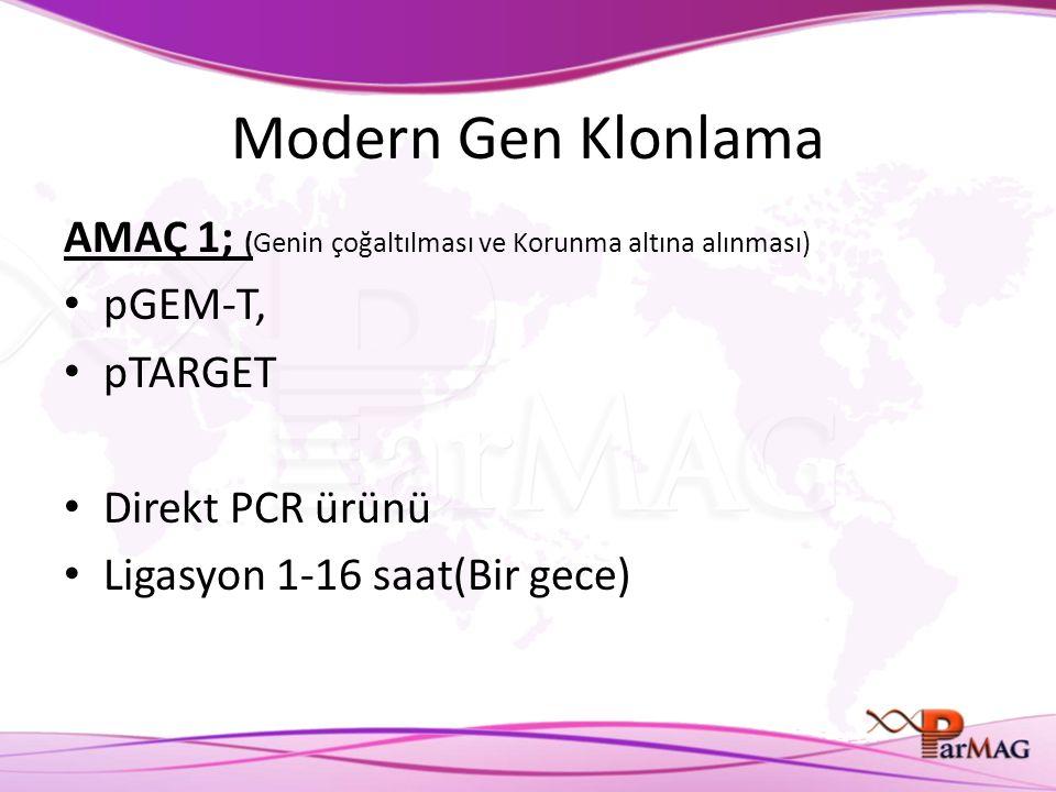 Modern Gen Klonlama AMAÇ 1; (Genin çoğaltılması ve Korunma altına alınması) pGEM-T, pTARGET Direkt PCR ürünü Ligasyon 1-16 saat(Bir gece)