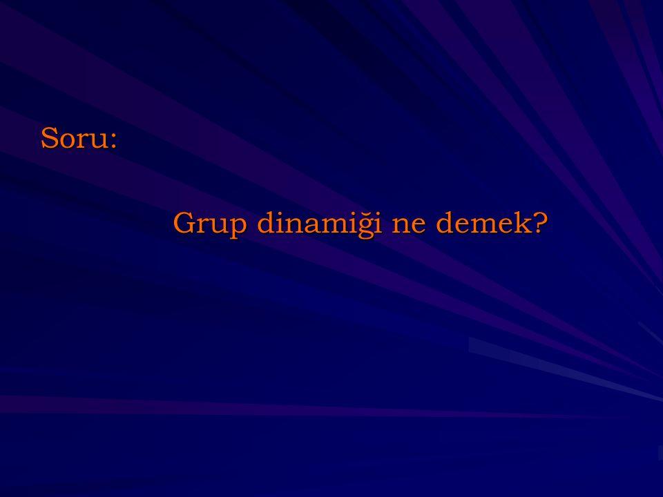 Soru: Grup dinamiği ne demek?