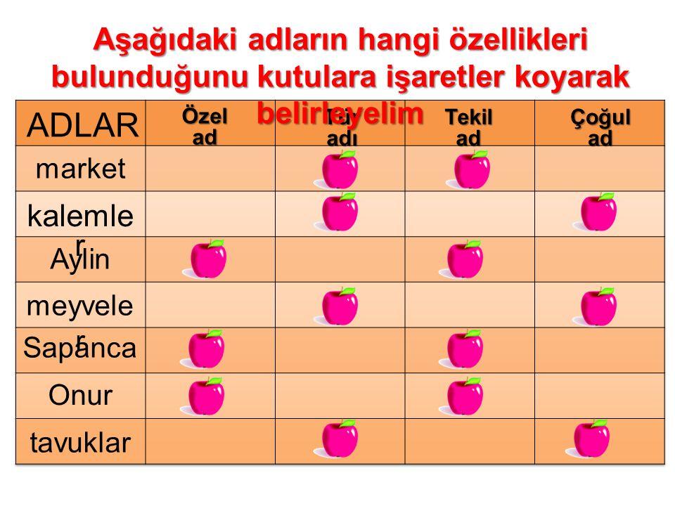ADLARÖzelad TüradıTekiladÇoğulad market kalemle r Aylin meyvele r Sapanca Onur tavuklar Aşağıdaki adların hangi özellikleri bulunduğunu kutulara işare
