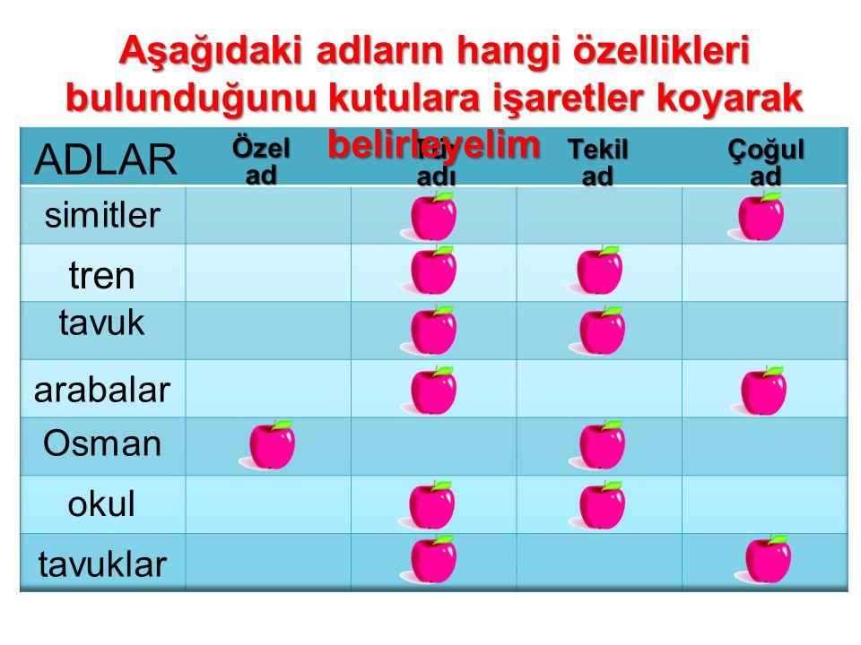 Özelad TüradıTekiladÇoğulad simitler tren tavuk arabalar Osman okul tavuklar Aşağıdaki adların hangi özellikleri bulunduğunu kutulara işaretler koyara