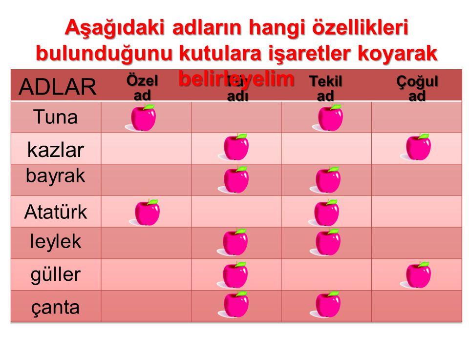 Özelad TüradıTekiladÇoğulad Tuna kazlar bayrak Atatürk leylek güller çanta Aşağıdaki adların hangi özellikleri bulunduğunu kutulara işaretler koyarak