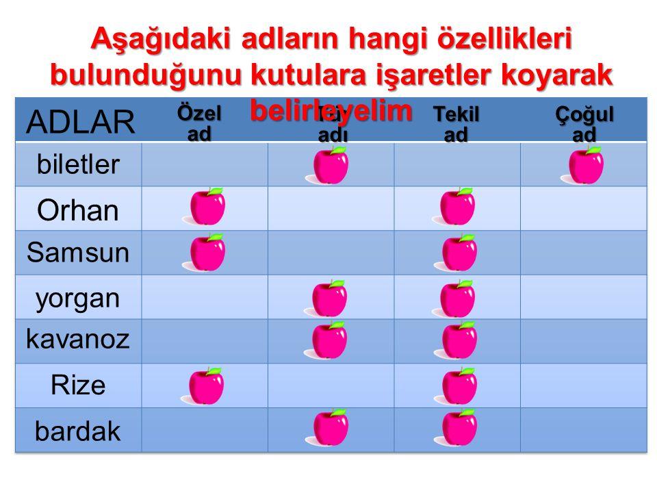 Özelad TüradıTekiladÇoğulad biletler Orhan Samsun yorgan kavanoz Rize bardak Aşağıdaki adların hangi özellikleri bulunduğunu kutulara işaretler koyara