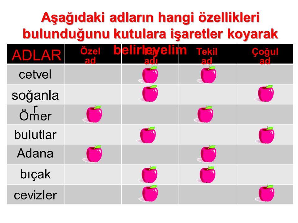 Özelad TüradıTekiladÇoğulad cetvel soğanla r Ömer bulutlar Adana bıçak cevizler Aşağıdaki adların hangi özellikleri bulunduğunu kutulara işaretler koy