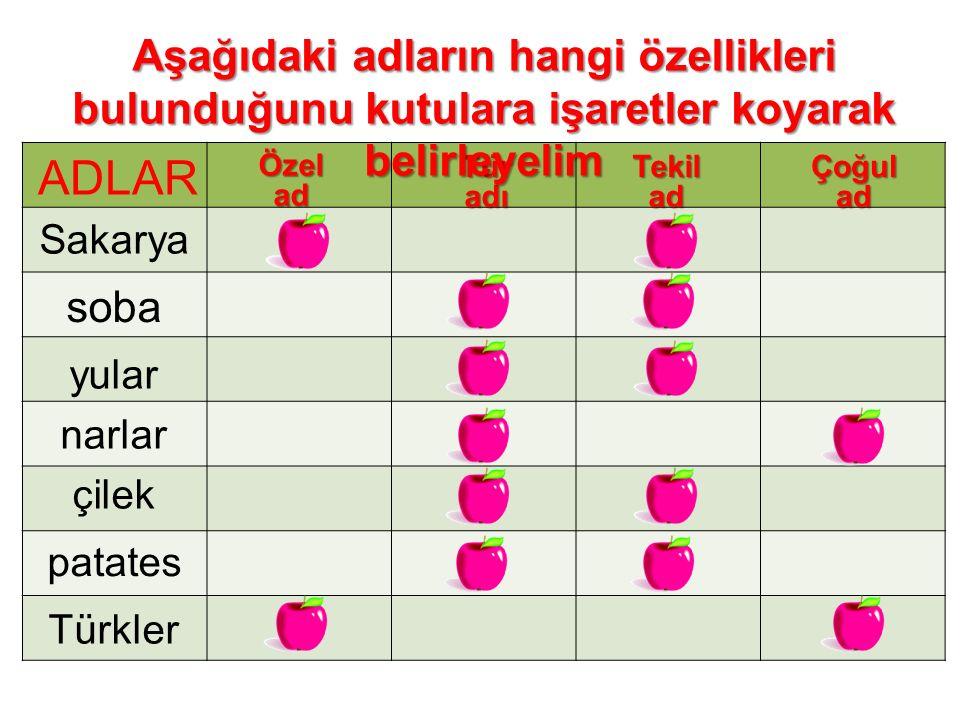 Özelad TüradıTekiladÇoğulad Sakarya soba yular narlar çilek patates Türkler Aşağıdaki adların hangi özellikleri bulunduğunu kutulara işaretler koyarak