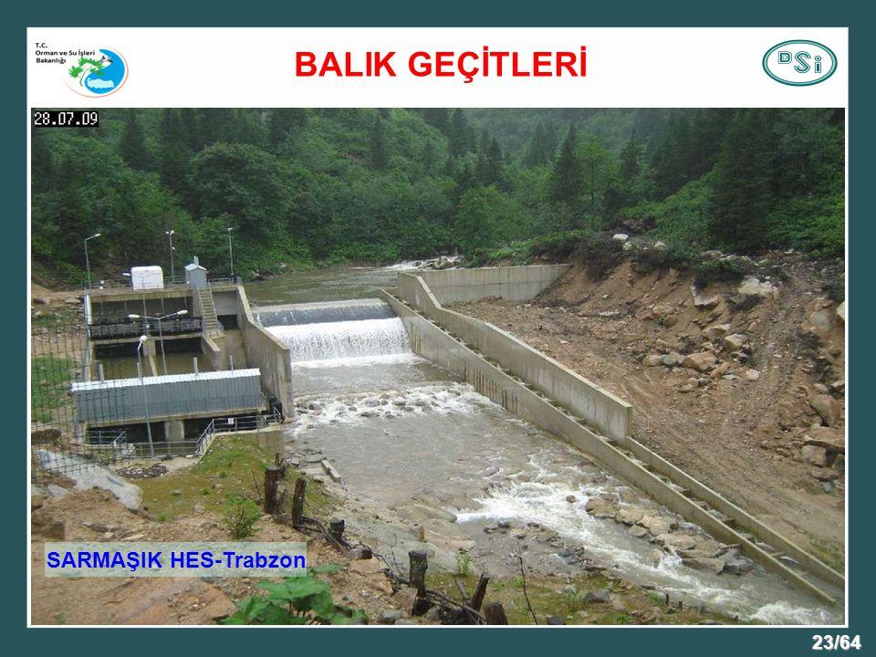 23/64 SARMAŞIK HES-Trabzon BALIK GEÇİTLERİ
